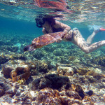 Snorkling with turtles in Lady Elliot Island
