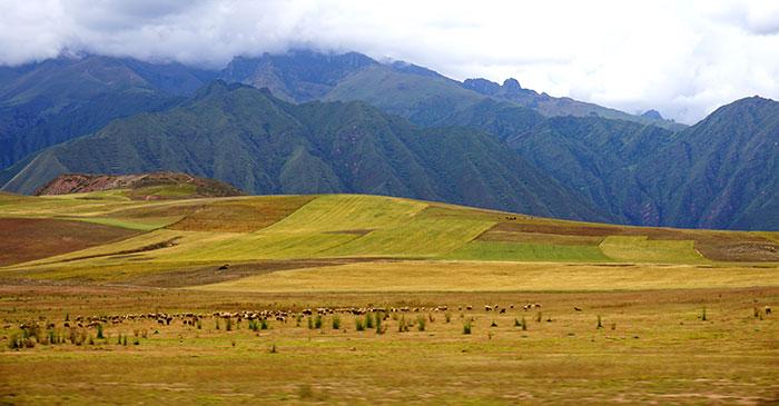 peru sacred valley road trip
