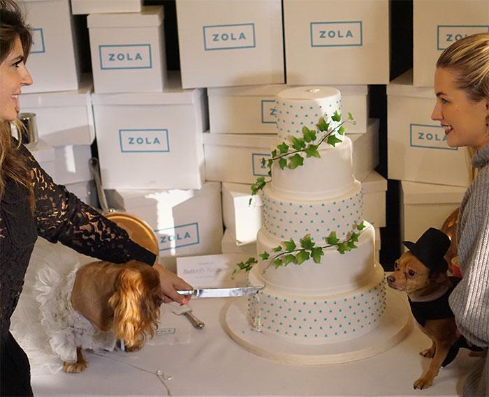 toast-and-finn-wedding3