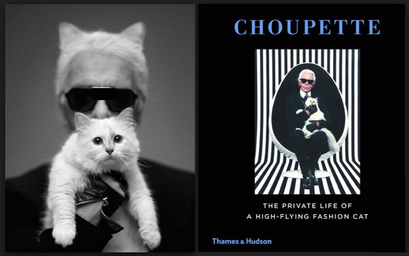 Choupette's book