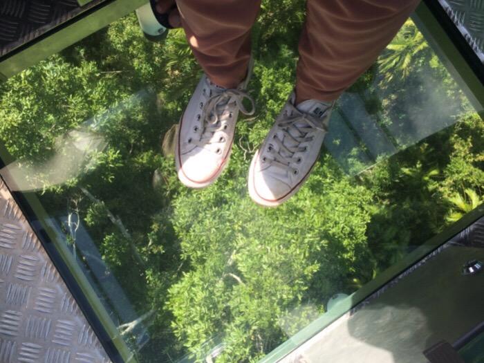 skyrail, Diamond View glass floor