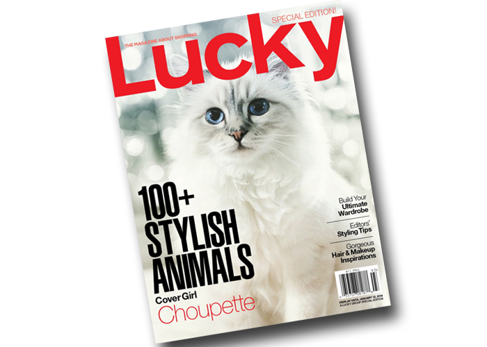 LuckyMagazineC