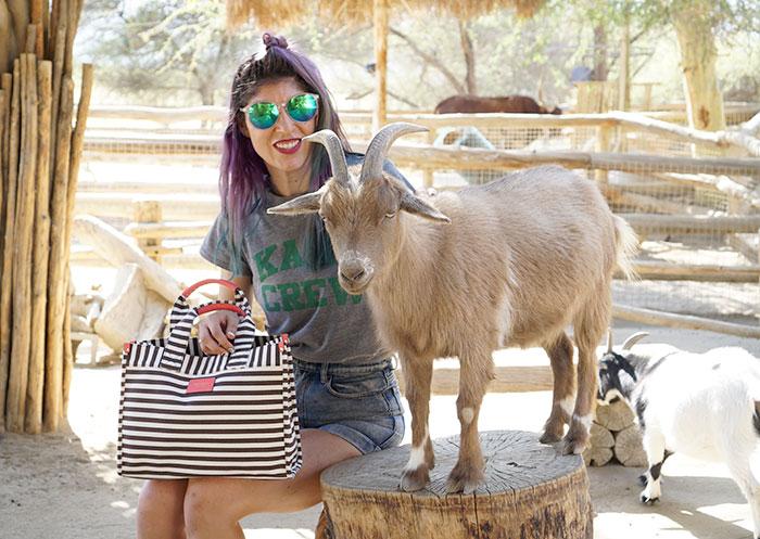 neutrogena-goat-living-desert