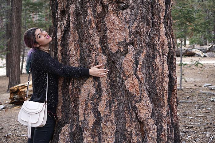 neutrogena-tree-hugger