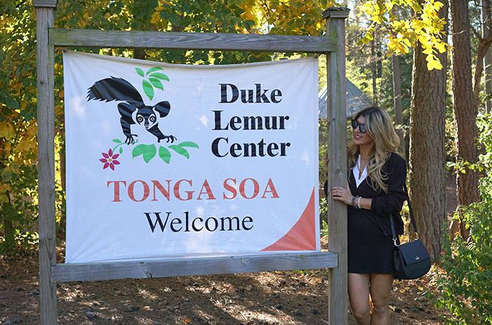 duke-lemur-center-lara-eurdolian-pretty-connected